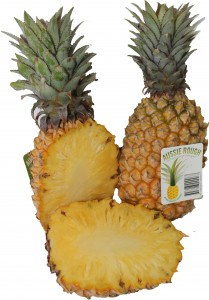 Rough_Leaf_Pineapples